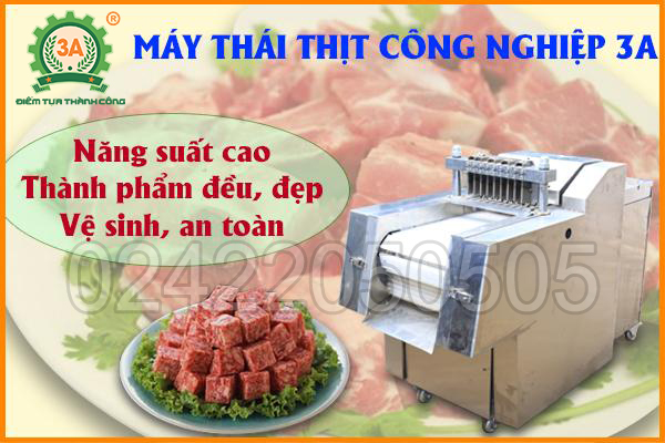 Máy thái thịt công nghiệp 3A4Kw (05)