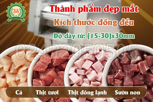 Máy thái thịt công nghiệp 3A4Kw (08)