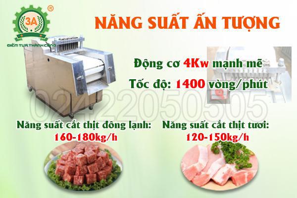 Máy thái thịt công nghiệp 3A4Kw (10)