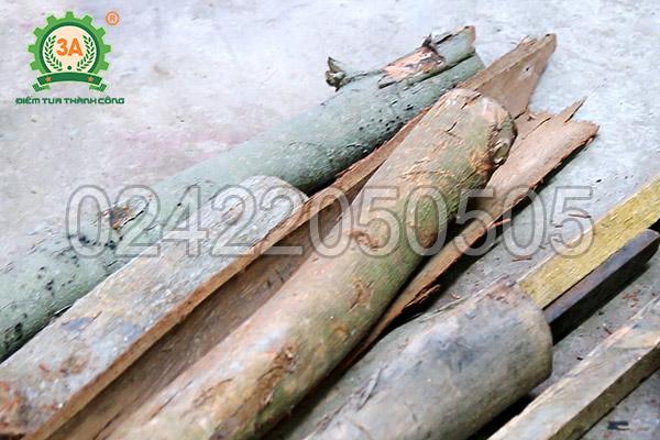 Máy băm gỗ, xơ dừa tươi 3A15Kw (06)
