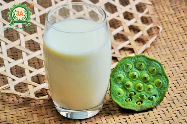 Cách làm sữa đậu xanh hạt sen
