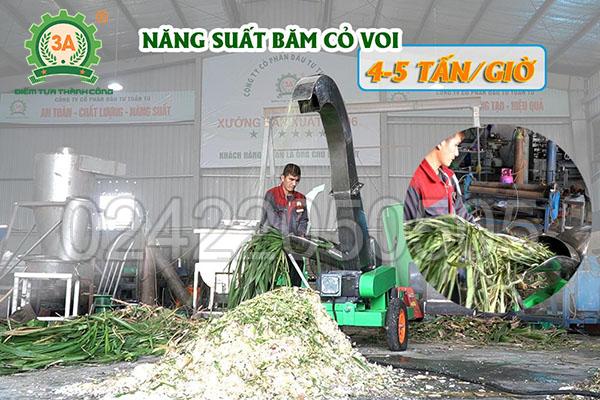 Máy băm chuối công nghiệp 3A7,5kW (07)