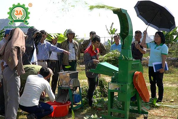 Máy nông nghiệp 3A tại Thanh Hóa: Máy băm cỏ 3A4Kw