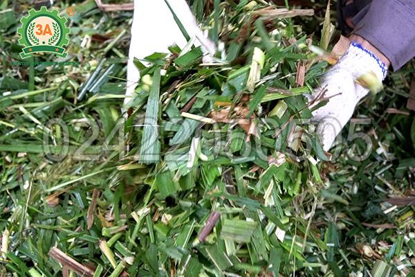 Máy băm cỏ, cây ngô 3A2,2kW có băng tải (05)