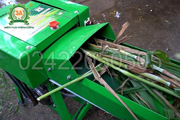 Máy băm cỏ, cây ngô 3A2,2kW có băng tải (12)