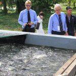 Kỹ thuật nuôi cá trong bể xi măng theo công nghệ mới
