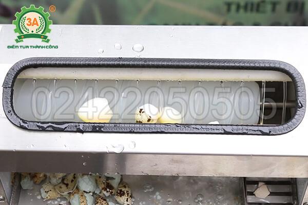 Máy bóc trứng cút 3A40W (10)