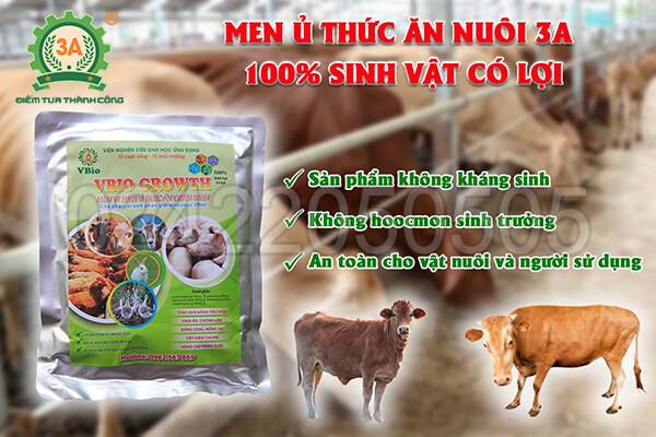 Men ủ thức ăn chăn nuôi 3A (06)