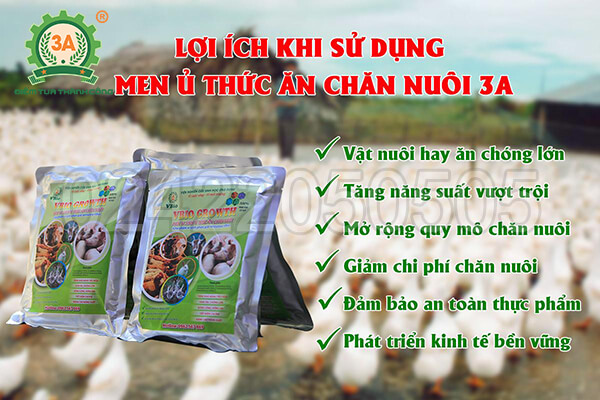 Men ủ thức ăn chăn nuôi 3A (10)